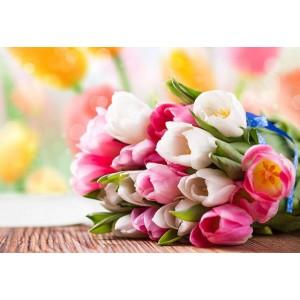 Привітання з 8 березням !
